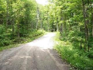 Lot for sale in Petite-Rivière-Saint-François, Capitale-Nationale, Chemin de la Conrad-Marie, 16788916 - Centris.ca