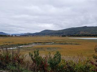 Lot for sale in Baie-Saint-Paul, Capitale-Nationale, Chemin de la Pointe, 15799209 - Centris.ca