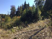 Terrain à vendre à Sainte-Lucie-des-Laurentides, Laurentides, Chemin du Golf, 13272866 - Centris.ca