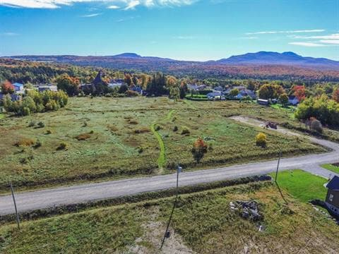 Lot for sale in Bonsecours, Estrie, Rue de l'Alizé, 15359356 - Centris.ca