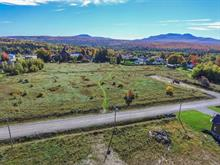 Lot for sale in Bonsecours, Estrie, Rue de l'Alizé, 17647398 - Centris.ca