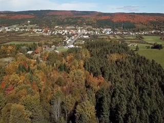 Terrain à vendre à Saint-Léon-de-Standon, Chaudière-Appalaches, Route de l'Église, 13796719 - Centris.ca