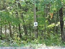 Terrain à vendre à Mayo, Outaouais, 4, Chemin de la Rivière-Blanche, 26872055 - Centris.ca
