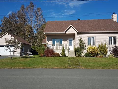 House for sale in Wotton, Estrie, 309, Rue  Monseigneur-O'Bready, 12676563 - Centris.ca