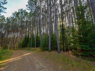 Lot for sale in Amherst, Laurentides, Chemin  Boileau, 17802315 - Centris.ca