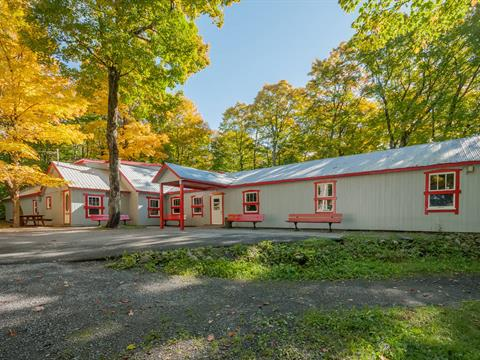 Commercial building for sale in Pont-Rouge, Capitale-Nationale, 223, Route  Grand-Capsa, 19758918 - Centris.ca