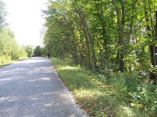 Terrain à vendre à Lac-des-Écorces, Laurentides, Chemin du Domaine, 22845831 - Centris.ca