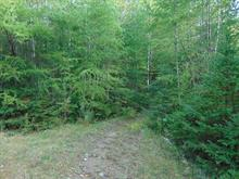 Lot for sale in Wentworth, Laurentides, Chemin du Paradis, 28027106 - Centris.ca