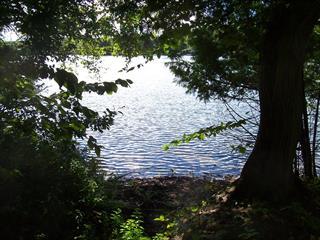 Terrain à vendre à Lac-des-Écorces, Laurentides, Chemin du Domaine, 21365101 - Centris.ca