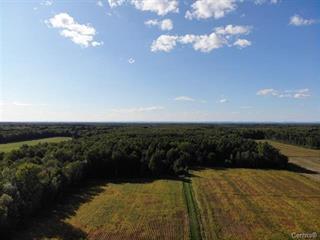 Terre à vendre à Lanoraie, Lanaudière, 485Z, Rue  Notre-Dame, 18222364 - Centris.ca