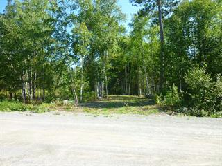 Lot for sale in Val-d'Or, Abitibi-Témiscamingue, 02, Chemin  Proulx, 28118517 - Centris.ca