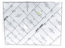 Terrain à vendre à Saint-Damien-de-Buckland, Chaudière-Appalaches, Rue  Labbé, 21821066 - Centris.ca