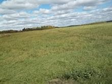 Land for sale in Rémigny, Abitibi-Témiscamingue, 945, Chemin des Pionniers, 27481919 - Centris.ca