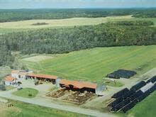 Ferme à vendre à Rémigny, Abitibi-Témiscamingue, 995, Chemin des Pionniers, 25590242 - Centris.ca