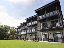 Condo à vendre à Saint-Ferdinand, Centre-du-Québec, 365, Rue  Principale, app. 301, 14455211 - Centris