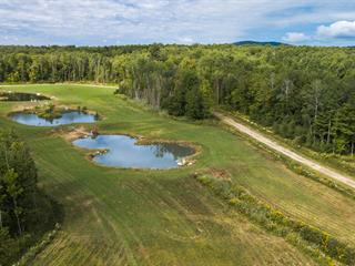 Terrain à vendre à Lac-Brome, Montérégie, Rue  St. Andrew, 24909382 - Centris.ca