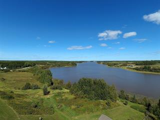 Lot for sale in Gallichan, Abitibi-Témiscamingue, Chemin de la Rivière Ouest, 12461360 - Centris.ca