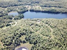 Terre à vendre in Saint-Sixte, Outaouais, Rue des Érables, 19865115 - Centris.ca