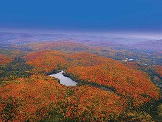 Terre à vendre à Lac-Supérieur, Laurentides, Chemin du Lac-Quenouille, 19377713 - Centris.ca