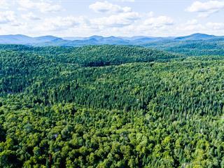 Land for sale in Lac-Supérieur, Laurentides, Chemin du Lac-Supérieur, 24316578 - Centris.ca