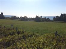 Terrain à vendre à Shigawake, Gaspésie/Îles-de-la-Madeleine, Route  132, 18389804 - Centris.ca