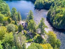Maison à vendre à Mayo, Outaouais, 100, Chemin  Saddler, 15694778 - Centris.ca