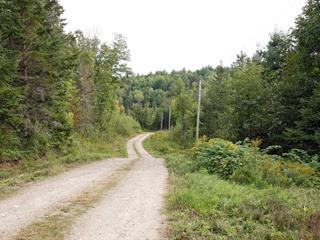Terrain à vendre à Kazabazua, Outaouais, Chemin du Lac-Sainte-Marie, 12162747 - Centris.ca