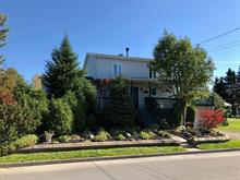 Maison à vendre à Sainte-Euphémie-sur-Rivière-du-Sud, Chaudière-Appalaches, 317, Rue  Principale Ouest, 11023675 - Centris.ca