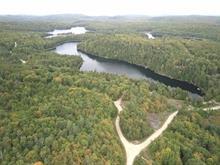Terrain à vendre à Amherst, Laurentides, Chemin du Lac-de-la-Grange, 28404569 - Centris.ca