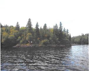 Lot for sale in Alma, Saguenay/Lac-Saint-Jean, 425, Chemin des Caribous, 17194390 - Centris.ca