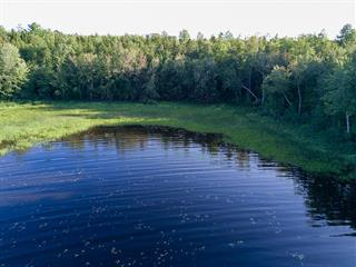 Land for sale in Sheenboro, Outaouais, Chemin  Tripp, 10536942 - Centris.ca