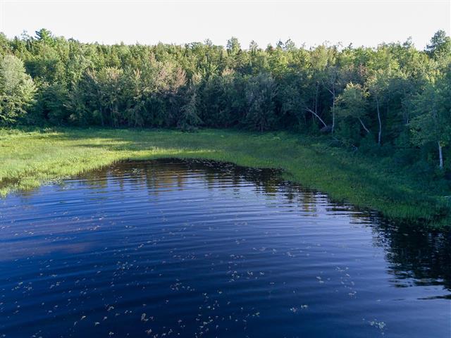 Land for sale in Sheenboro, Outaouais, Chemin  Tripp, 10536942 - Centris.ca