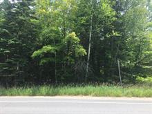Terrain à vendre à Saint-Donat, Lanaudière, Route  125 Nord, 11589371 - Centris