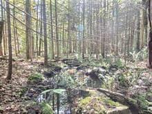 Terre à vendre à Saint-Tite, Mauricie, Route du Lac-Pierre-Paul, 14366579 - Centris.ca