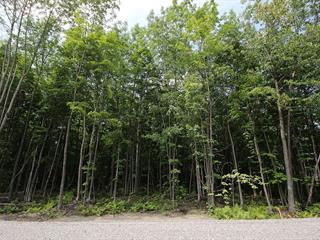 Lot for sale in Saint-Denis-de-Brompton, Estrie, 702, Rue des Pionniers, 21394546 - Centris.ca