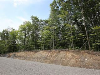 Lot for sale in Saint-Denis-de-Brompton, Estrie, 732, Rue des Pionniers, 18816327 - Centris.ca