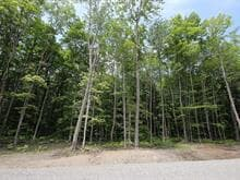Lot for sale in Saint-Denis-de-Brompton, Estrie, 712, Rue des Pionniers, 20474434 - Centris.ca