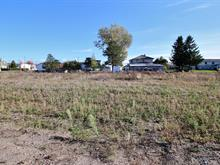 Terrain à vendre à Saint-Arsène, Bas-Saint-Laurent, 103, Rue des Framboisiers, 14530042 - Centris.ca
