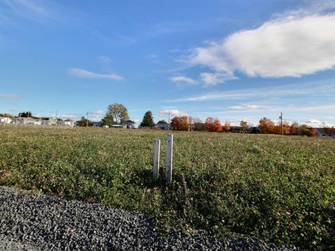 Terrain à vendre à Saint-Arsène, Bas-Saint-Laurent, 116, Rue des Framboisiers, 20979947 - Centris.ca