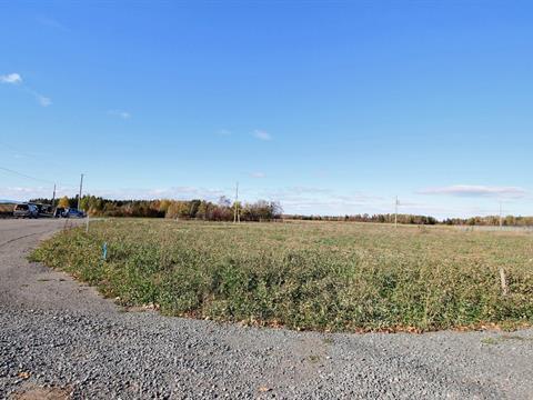 Terrain à vendre à Saint-Arsène, Bas-Saint-Laurent, 110, Rue des Framboisiers, 11575960 - Centris.ca