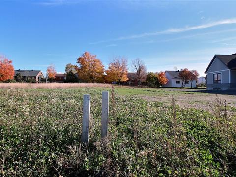 Terrain à vendre à Saint-Arsène, Bas-Saint-Laurent, 111, Rue des Framboisiers, 10834755 - Centris.ca