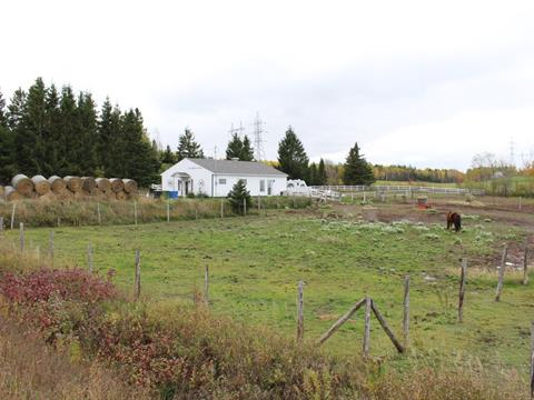Hobby farm for sale in Saint-Anaclet-de-Lessard, Bas-Saint-Laurent, 293, Route de Neigette, 22844228 - Centris.ca