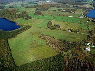 Land for sale in Ferme-Neuve, Laurentides, Chemin du Lac-des-Journalistes, 20875865 - Centris.ca