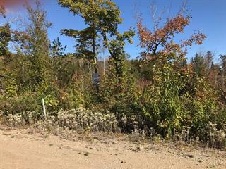 Lot for sale in Saint-Côme, Lanaudière, Rue  Trianon, 9025410 - Centris.ca
