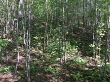 Lot for sale in Brownsburg-Chatham, Laurentides, Route du Nord, 28497605 - Centris.ca