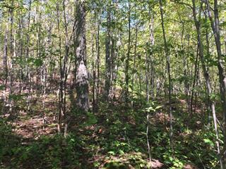 Terrain à vendre à Brownsburg-Chatham, Laurentides, Route du Nord, 28497605 - Centris.ca