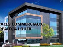 Commercial unit for rent in Saint-Jérôme, Laurentides, 995, Rue  Maher, suite 170, 23676515 - Centris.ca