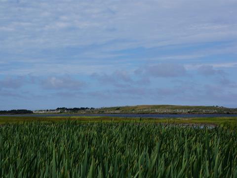 Terre à vendre à Grosse-Île, Gaspésie/Îles-de-la-Madeleine, Île aux Loups, 24318712 - Centris.ca