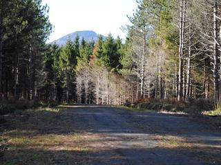 Terrain à vendre à Ogden, Estrie, Chemin de Cedarville, 22668309 - Centris.ca