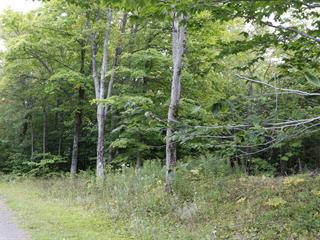 Terrain à vendre à Montmagny, Chaudière-Appalaches, Route  Trans-Comté, 14115827 - Centris.ca